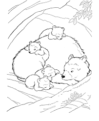 brown bear coloring bears unit study row