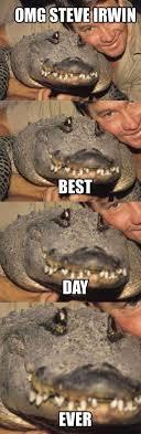Alligator Meme - see ya later alligator rip meme by ash2291 memedroid