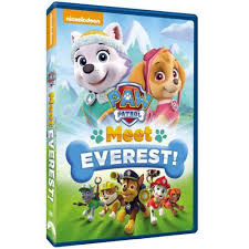 paw patrol meet everest widescreen walmart