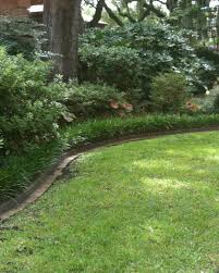 the side yard as a garden feature