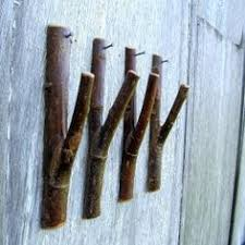 wall hooks by tree branches coat racks wolf den and coat hanger