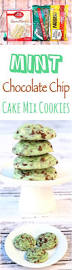 mint chocolate chip cookies recipe easy diy thrill mint