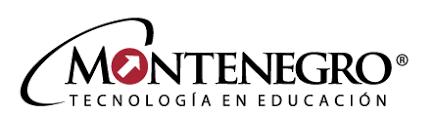 examen montenegro 3 grado primaria montenegro editores examenes