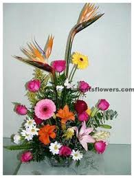 www scentimentsflowers com lily flower meaning for 2nd and 30th