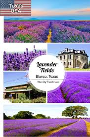 Texas travellers images 17 best images about female travel bloggers jpg