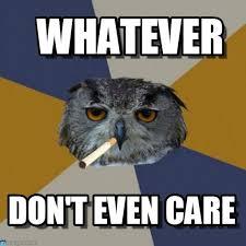 Whatever Memes - whatever art student owl meme on memegen