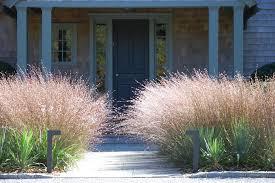 ornamental grass border landscape contemporary with decorative