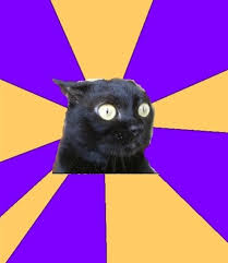 Meme Generator Black Background - image 221971 anxiety cat know your meme