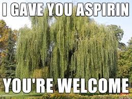 Tree Meme - willow tree and aspirin meme on imgur