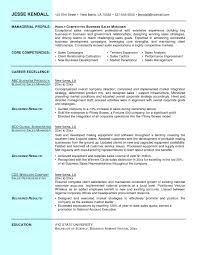 project manager resume sample doc resume template it sales manager examples google search 87 marvellous sales manager resume examples template