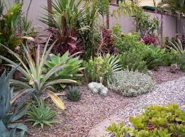 Backyard Plants Ideas Garden Design Ideas Get Inspired By Photos Of Gardens From