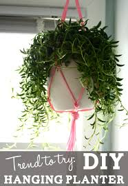 Diy Hanging Planters by Trend To Try Diy Hanging Planter