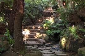 Kirstenbosch National Botanical Gardens by Kirstenbosch National Botanical Gardens Cape Town South Africa
