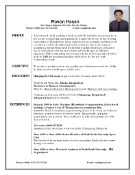 Good Resume Building Tips by Professional Resume Writing Tips Free Resume Example And Writing