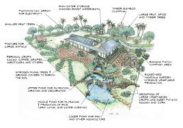 self sustaining garden sustain yourself and a family of 4 on a one acre tropical mini farm