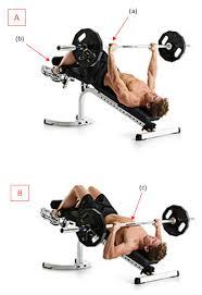 decline bench press muscles gym inspiration com barbell decline bench press
