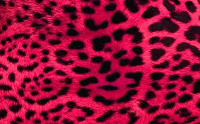 leopard print wallpaper qygjxz
