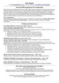 resume exle account executive resume gallery of rob sippel account manager customer service team leader