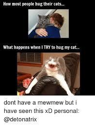 Cat Hug Meme - 25 best memes about hugging my cat hugging my cat memes