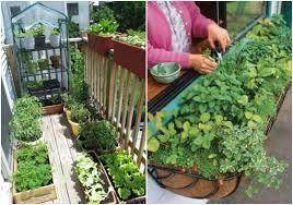 treatment small apartment balcony garden ideas