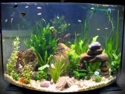 aquarium decorations cool diy fish tank decorations youtube