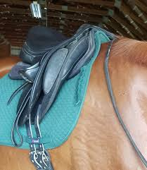 horse saddle how your half pad can make or break your ride u2013 dressage fundamentals