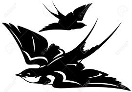 flying swallow bird vector illustration black and white outline