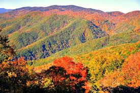 leaf peeping u2013 vogel talks rving