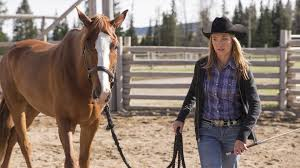 Wildfire Episode Guide Season 2 by There But For Fortune Summary Heartland Season 7 Episode 9