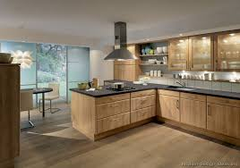 Zebra Wood Kitchen Cabinets with Pictures Of Kitchens Modern Medium Wood Kitchen Cabinets