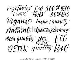 seamless eco pattern set eco phrases stock vector 683524570