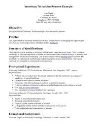 resume vet tech resumes free sles vet tech resume no