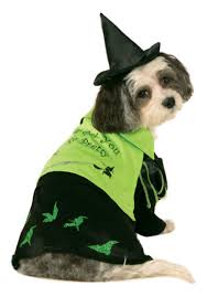 Extra Large Dog Halloween Costumes Wicked Witch West Pet Costume