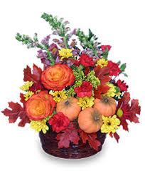 basket of flowers pumpkin pleasures basket of flowers in dodge city ks humble