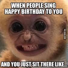 Am I The Only One Here Meme - the 25 best birthday memes ideas on pinterest meme birthday