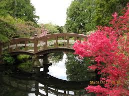 mother u0027s day high tea hatley castle garden abkhazi garden and