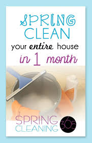 Springcleaning 638 Best Spring Cleaning 365 Images On Pinterest Spring Cleaning
