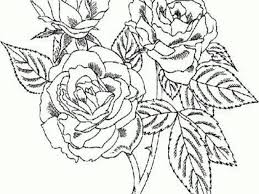 printable rose coloring pages for kids u2014 fitfru style