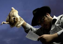 yom jippur yom kippur chicken swinging ritual spurs two lawsuits in us