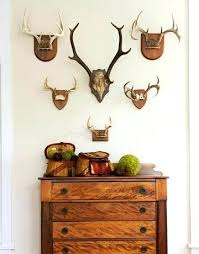 deer home decor antler home decor decorating with deer heads and antlers real