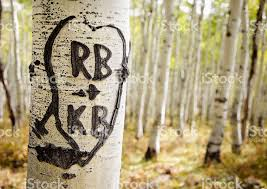 initials carved in tree heart and initials carved in tree stock photo more pictures of