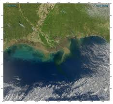 sediment in the gulf of mexico image of the day