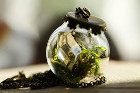 diy terrarium necklaces that let you carry a tiny piece of nature