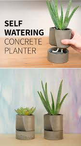 self watering concrete planter diy concrete concrete and planters