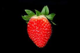 strawberry wikipedia