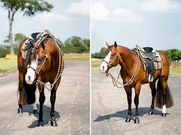 Black Mustang Ranch Pilot Point Texas Rusty Green Quarter Horses Kirstie Marie Photography