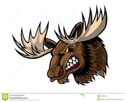 angry moose head stock vector image of illustration 40305534