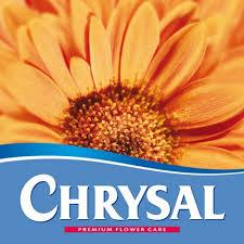 flower food packets chrysal flower food chrysalusa