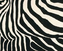 zebra print rugs add color to modern floors