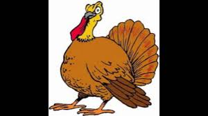 funny thanksgiving gifs the turkey song youtube